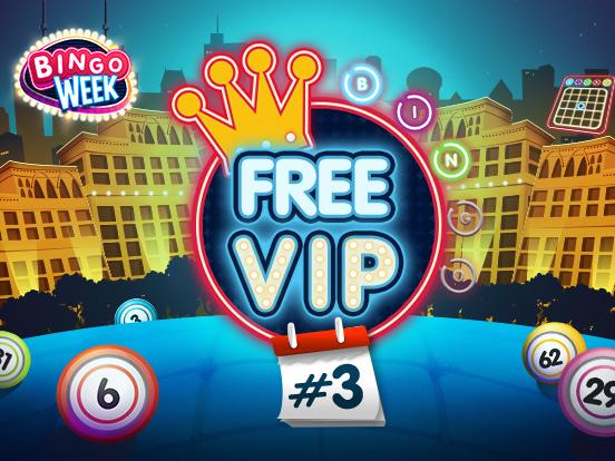 bingo online spielen gratis